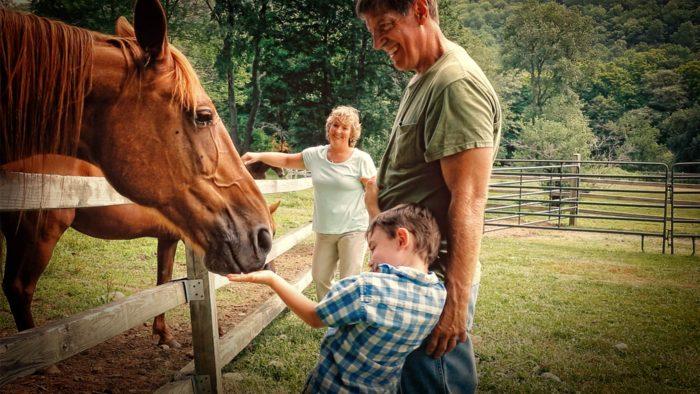 Life Svmc Horses Family